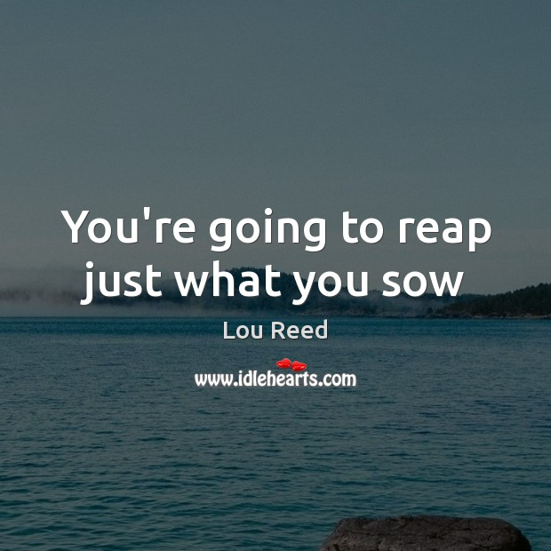 You're going to reap just what you sow Image