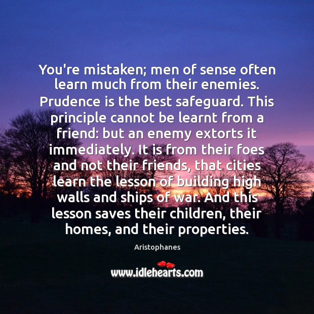 Image, You're mistaken; men of sense often learn much from their enemies. Prudence