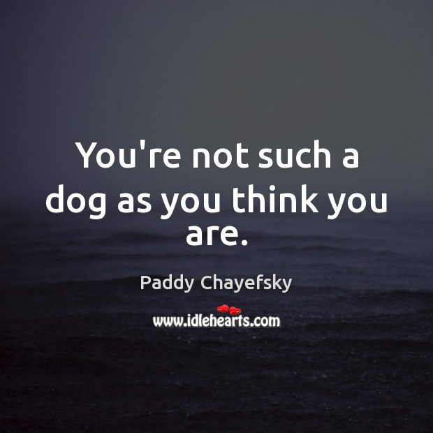You're not such a dog as you think you are. Paddy Chayefsky Picture Quote