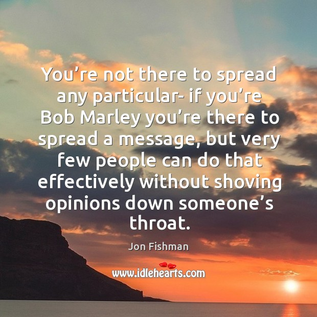 You're not there to spread any particular- if you're bob marley you're there to spread a message Image