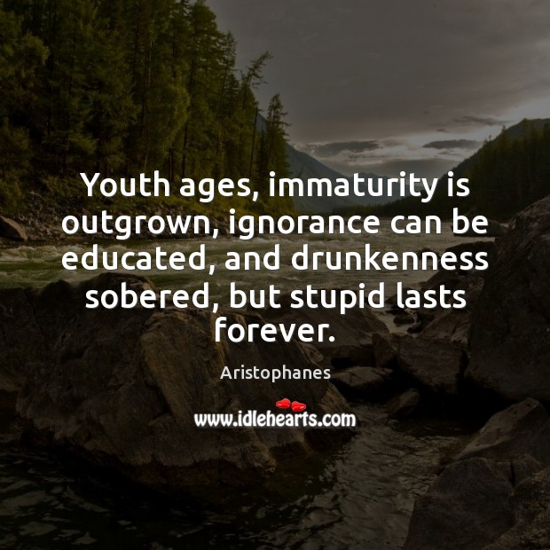 Image, Youth ages, immaturity is outgrown, ignorance can be educated, and drunkenness sobered,