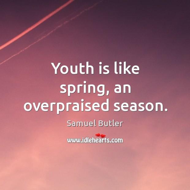 Image, Youth is like spring, an overpraised season.