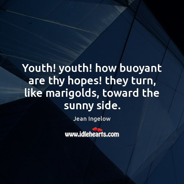 Youth! youth! how buoyant are thy hopes! they turn, like marigolds, toward the sunny side. Image