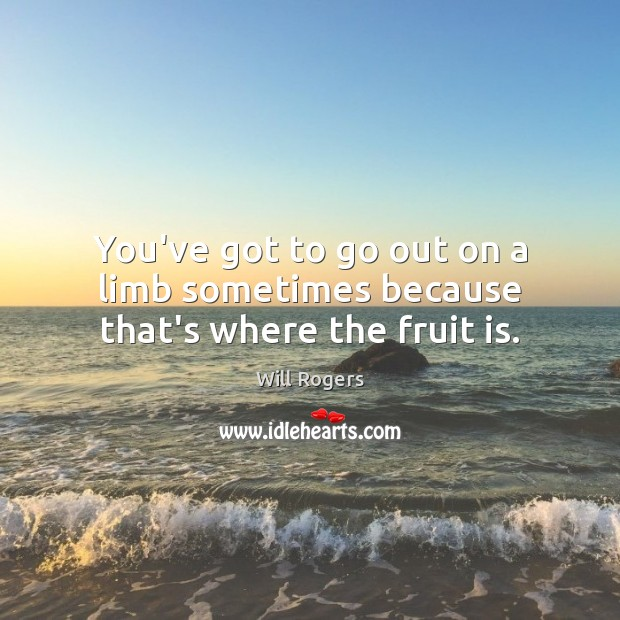 You've got to go out on a limb sometimes because that's where the fruit is. Image