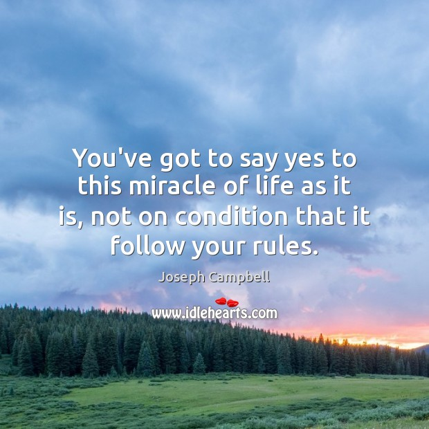 You've got to say yes to this miracle of life as it Joseph Campbell Picture Quote