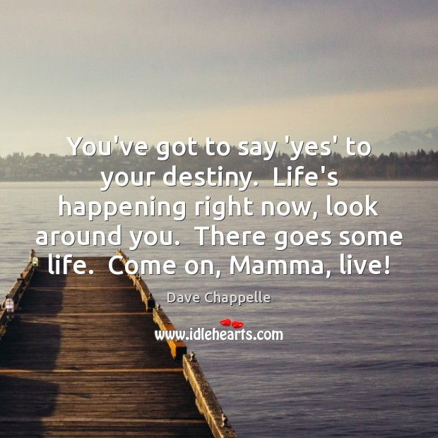 You've got to say 'yes' to your destiny.  Life's happening right now, Dave Chappelle Picture Quote