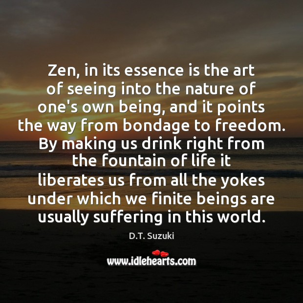 Zen, in its essence is the art of seeing into the nature Image
