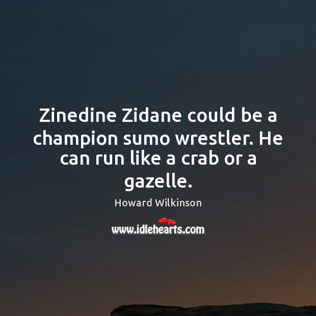 Zinedine Zidane could be a champion sumo wrestler. He can run like a crab or a gazelle. Image