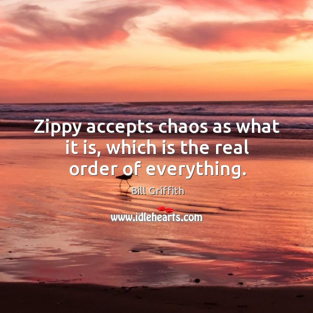 Zippy accepts chaos as what it is, which is the real order of everything. Image