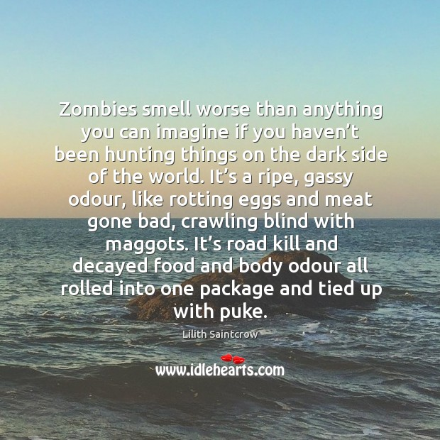 Zombies smell worse than anything you can imagine if you haven't Lilith Saintcrow Picture Quote
