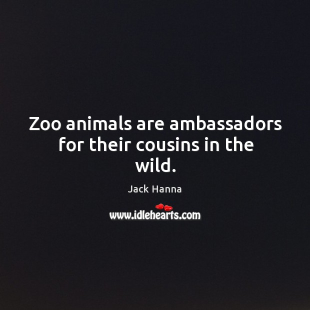 Zoo animals are ambassadors for their cousins in the wild. Jack Hanna Picture Quote